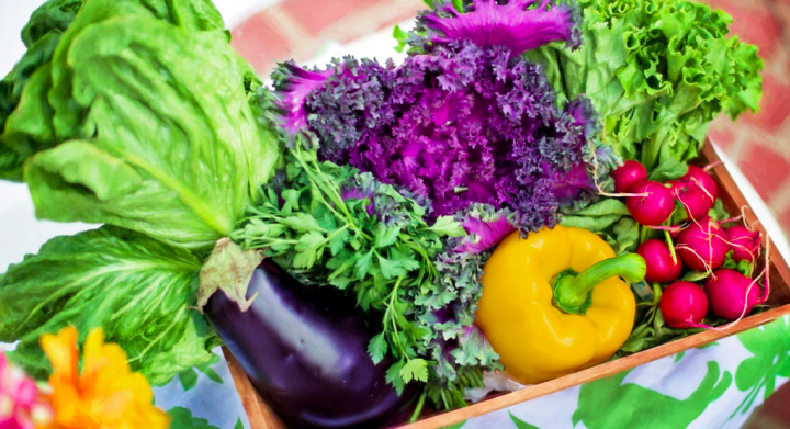 What Are the Best Foods for Immune Support?